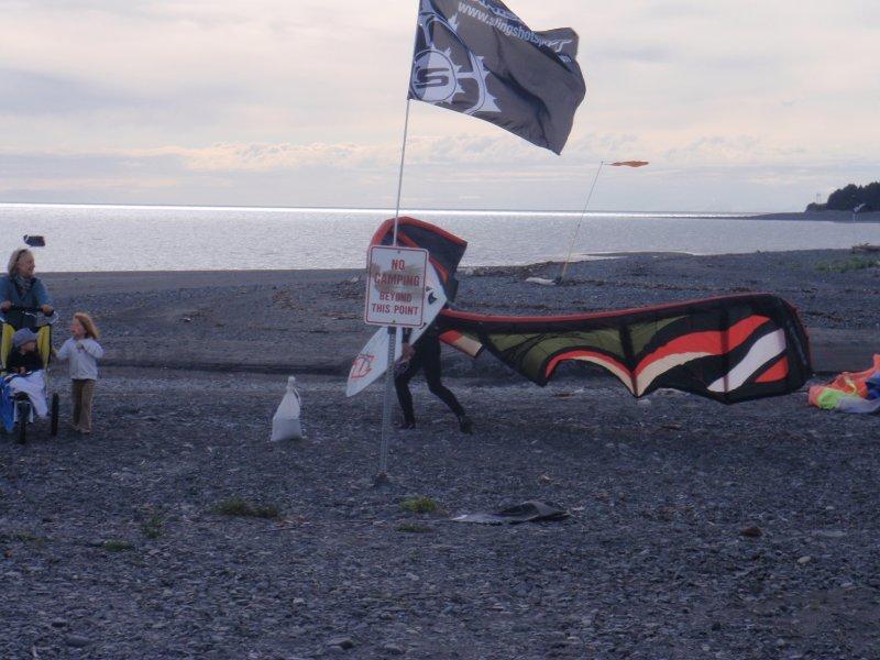 Kites on the beach 1