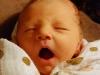 gwen-3-days-old-1