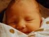 gwen-3-days-old